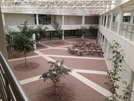 The Green Atrium in the Hospital